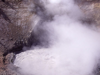 Yellowstone Mud Volcano