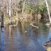Murderkill River