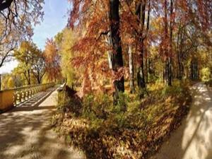 Muskauer Park