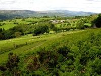 Mynydd Llangynidr