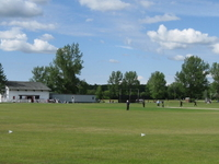 Maple Leaf Cricket Club