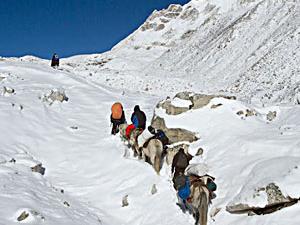 Around Manaslu Trek Photos