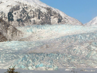 Mendenhall Glacier