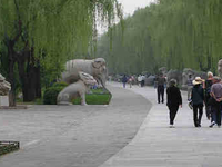 Ming Dynasty Tombs
