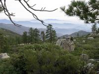 Sierra de San Pedro Mártir National Park