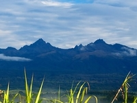 Mount Giluwe
