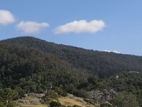 Gulaga National Park