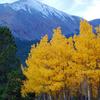 Mount Silverheels From Boreas Pass