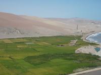 Ocoña River
