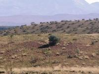 Mount Zeil