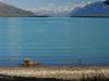 Naknek Lake