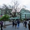 Namchi Street View In Sikkim