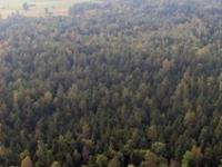 Nature Reserve Miodne