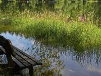 Ötscher Tormäuer Nature Park