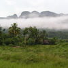 Nebel Im Valle