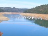 New Bullards Bar Reservoir On North Yuba River