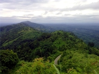 Nilgiri Mountain Hills