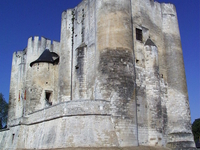 Chateau de Niort