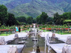 Kashmir Honeymoon Package Photos