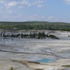 Norris Geyser Basin In Yellowstone