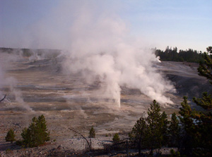 View Of Norris Geyser Basin