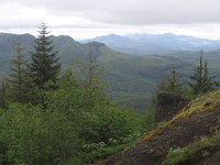 Northern Oregon Coast Range