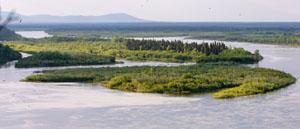 Nushagak River