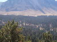 Nevado de Toluca National Park