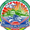 Official Seal Of City Of Navotas