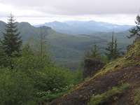 Oregon Coast Range