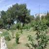 Orto Botanico dell'Universita di Lecce