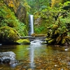 OR Weisendanger Fall In Columbia River Gorge