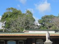 Oahu Cementerio