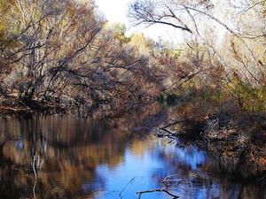 Hassayampa River