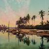 Palm River