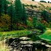 Palouse River
