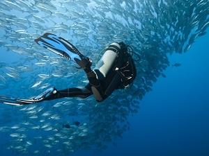 Bohol Sea Diving Site