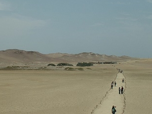 Paracas National Reservation