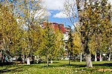 Park Near Potala Palace In Lhasa