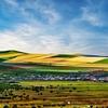 Pastoral Landscape, Inner Mongolia