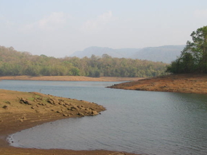 Peechi Vazhani Wildlife Sanctuary