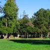 People's Park, Berkeley