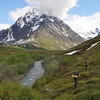 Peters Creek - Mt. Rumble - Chugach Mountains - Alaska