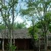 Phulbani Tribal House