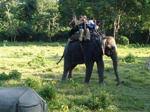 Nepal Jungle Safari 06 Days