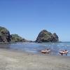 Piha - Beach Sports - Auckland NZ