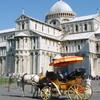 Pise Duomo