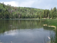 Posey Lake Campground