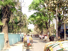 Pouroshobha Road Comilla