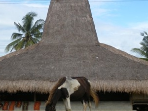 Prailiu Village